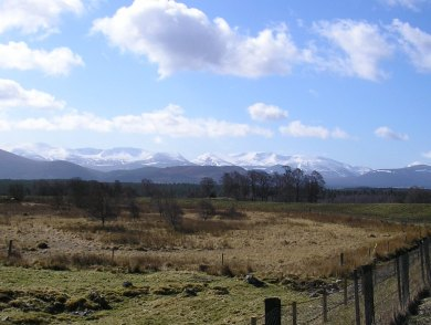 April in the Highlands