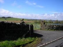 Pretentious gate posts for a farm?