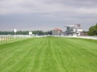 NCN65 crosses York racecourse - must be interesting when race is on!