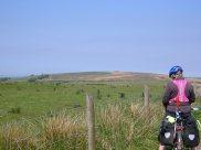 Exmoor - tough and hot!